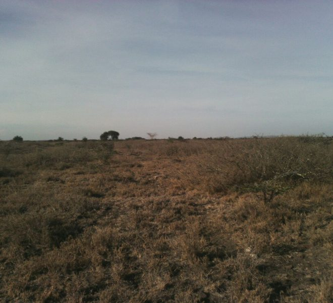 isinya plot for sale