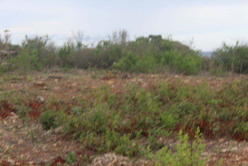 1 acre for sale in prime areas of diani ksh7million