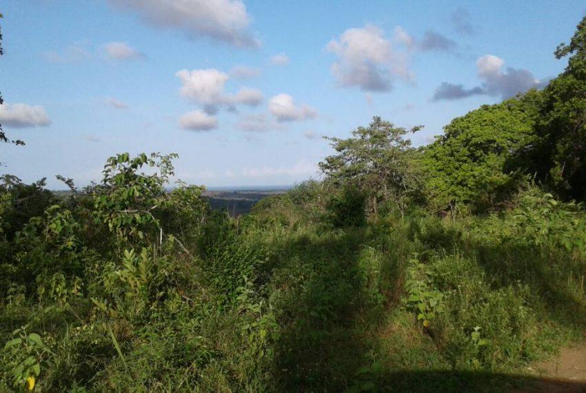 shimbahills 330 acres 4