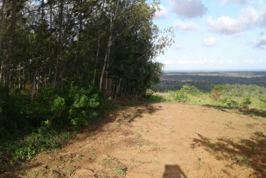 shimbahills 330 acres 7