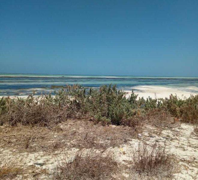 13.34 Acre Beach Plot, Malindi