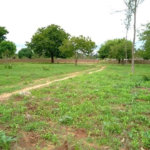 1/4 acre Plot, Kwa Bulo, Bombolulu Estate, Mombasa