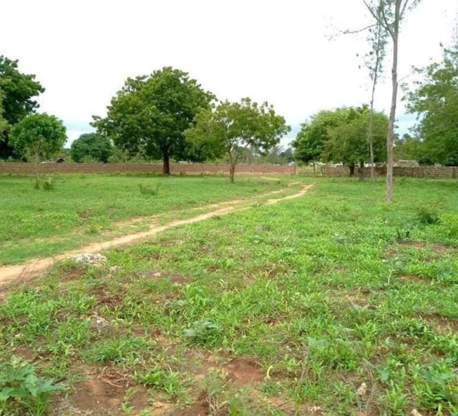1/4 Acre Plot, Diani, South Coast